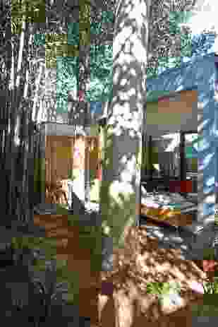 Virtual disengagement of the new works takes advantage of unusual site dimensions and established trees.