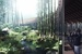 Hassell wins competition to design 'Panda Land' in southern China