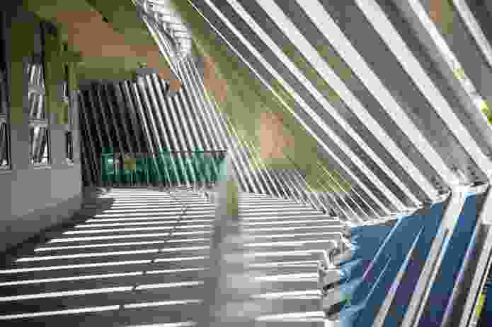 Steel channels act as a sunshading device while creating patterns of striated light and shadow that change throughout the day.