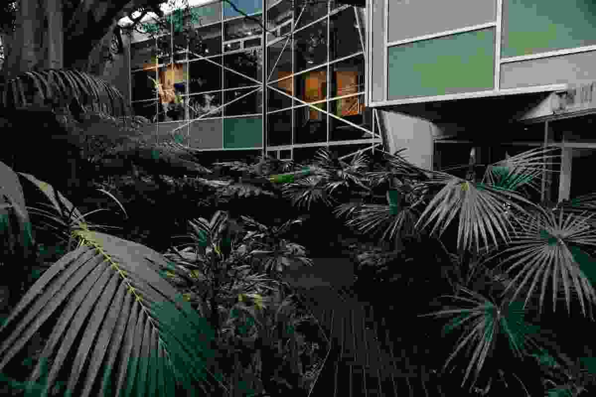System Garden Rainforest Walk by SBLA Studio