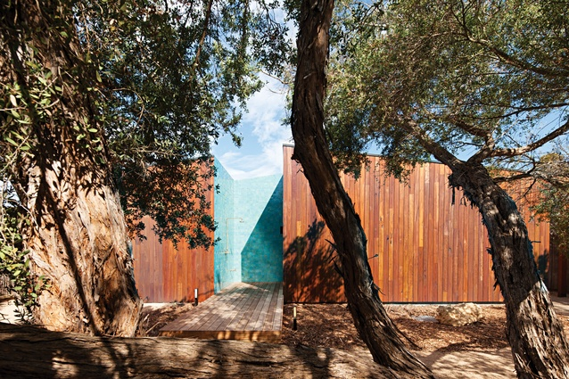 The western facade of Hide and Seek House is punctuated by a bright blue outdoor showering nook.