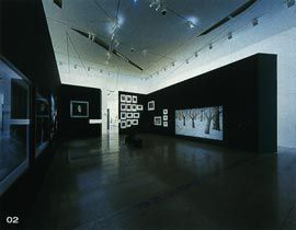 Enclosure on the Level 3 galleries housing an installation of work by Peter Booth and Bill Henson.Image: Trevor Mein.