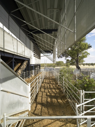 Deepwater Woolshed by Peter Stutchbury Architecture (2005).