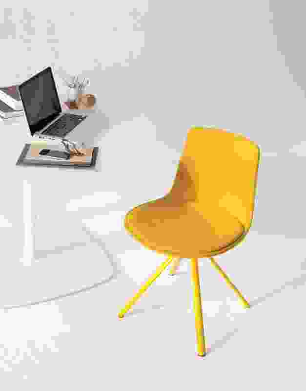 Lottus chair by Enea.