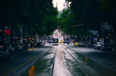 Australia's first dedicated urban forestry course launches in Melbourne
