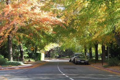 Linnaeus Way, at the Australian National University (ANU), Canberra