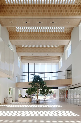 "The timber ceiling of the ""internal street"" adopts the tessellated pattern seen on the external glazing."