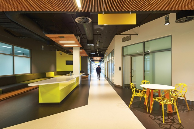 As the Student Services Building for Edith Cowan University's Joondalup Campus, Ngoolark houses an array of student and staff workspaces, offices and meeting spaces.