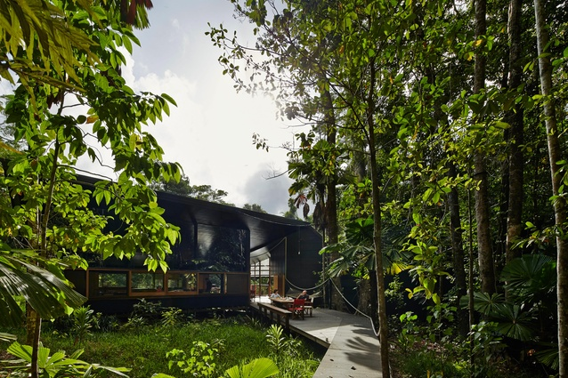 The house and pathway are on existing clearings in the dense vegetation, leaving canopy trees intact.