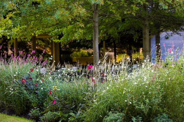 NGV Grollo Equiset Garden by Oculus in collaboration with Robyn Barlow.