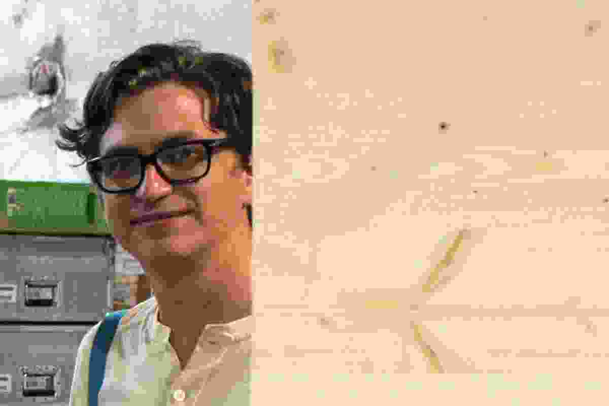 Kieran Long, journalist, critic and assistant director of the 2012 Venice Architecture Biennale.