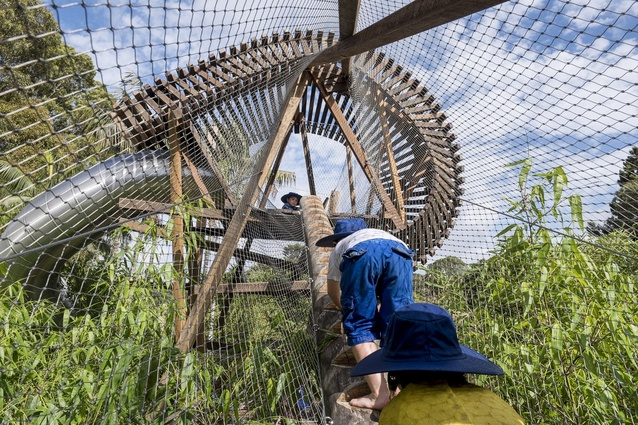 The Ian Potter Children's Wild Play Garden, designed by Aspect Studios.