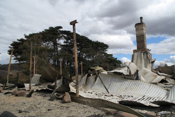 Institute calls for donations for bushfire rebuilding effort