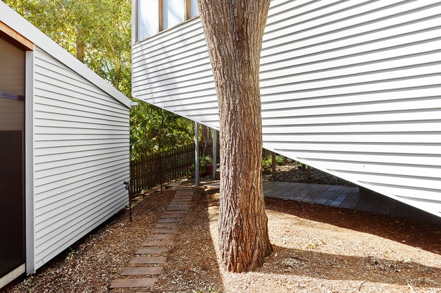 With eight trees to be retained the site of the Jule House by Claire Humphreys and Kevin O'Brien Architects created a complex spatial puzzle.