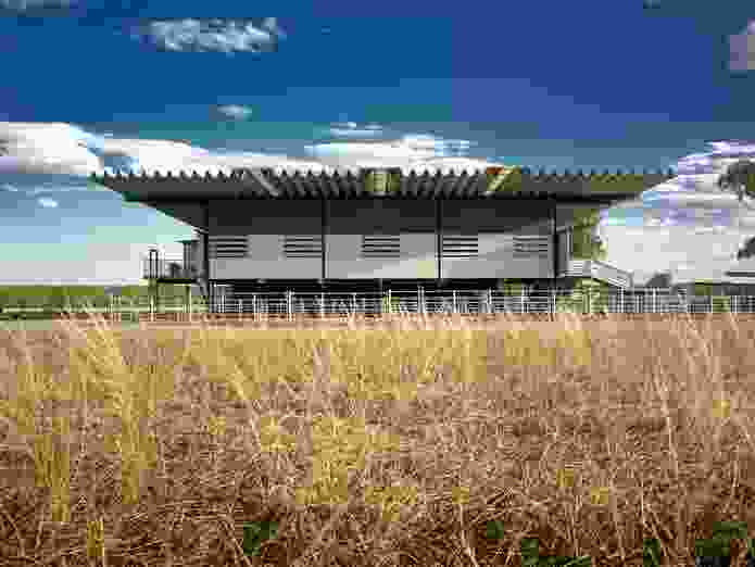 Deepwater Woolshed, Wagga Wagga, NSW, by Peter Stutchbury Architecture (2001–05).
