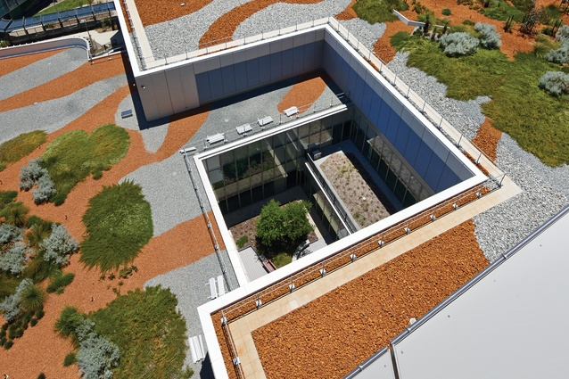 The roof garden landscape is unlike any other in Perth, yet quintessentially Western Australian.