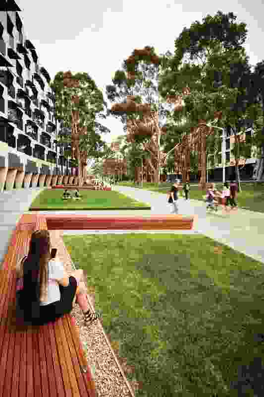 The new Sports Walk by MGS Architects at Monash University's Clayton campus. In background, left: Logan Hall by McBride Charles Ryan, right: Holman Hall and Campbell Hall by Hayball and Richard Middleton Architects.