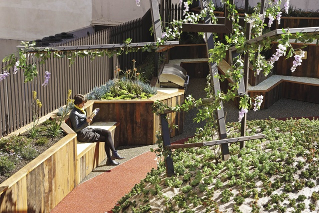 A series of elevated garden beds, seating and barbecue facilities have been incorporated on the rooftop.