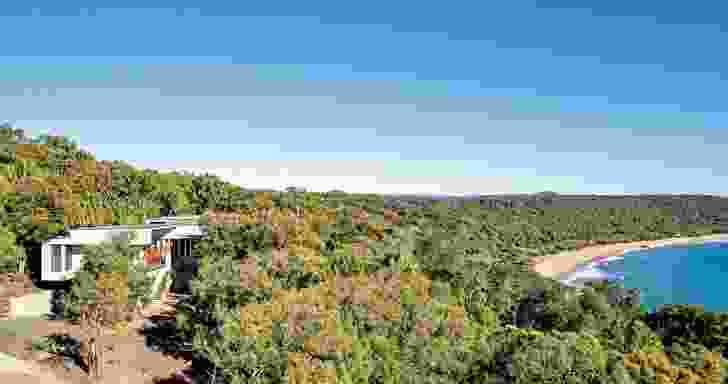 The house sits below the height of the canopy, avoiding interruption of the natural ridgeline.
