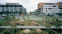 The landscaped detention basin in the centre of the Victoria Park scheme and surrounding housing.