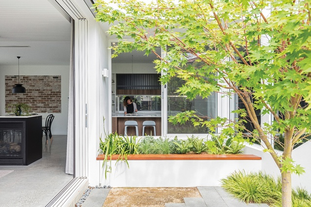 The kitchen, dining and living spaces pivot around the courtyard and open to a covered outdoor space.