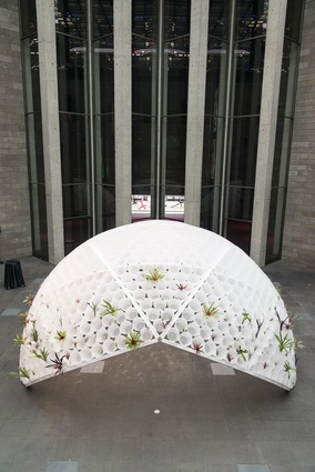 Rory Hyde's Bin Dome installation in timber, plastic and steel 'planted' with bromeliads and tillandsias.