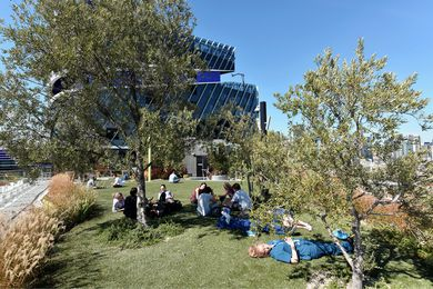At the western end of the Level 7 rooftop terrace, hospital staff and patients relax on an expanse of artificial grass shaded by Miscanthus grasses and olive trees.
