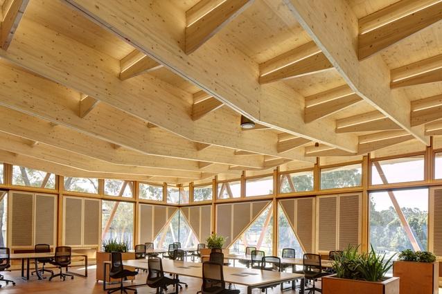 Macquarie University Incubator by Architectus, Education finalist.