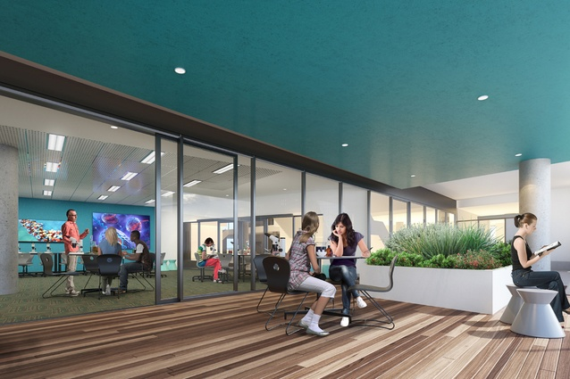 Each level of the proposed Prahran High School by Gray Puksand will have an outdoor terrace.