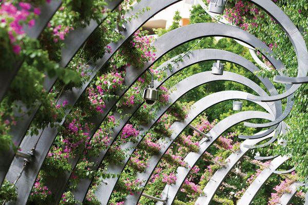 Ronstan greening systems.