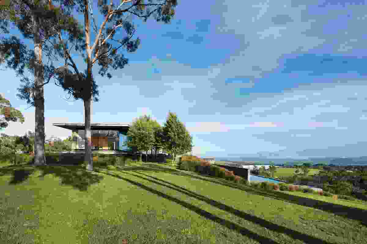 The horizontal planes of the house contrast with the ragged verticality of the nearby eucalyptus grove.
