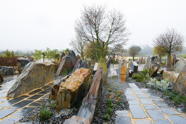 Tilted slabs of pyrenees quartzite provide a range of micro climates for a diverse collection of rare flora.