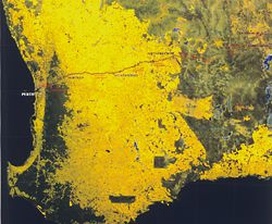 Satellite image Perth to Kalgoorlie, showing the Goldfields Water Supply Pipeline.