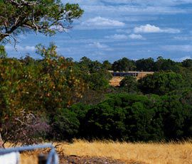Looking across the Gingin Brook to the long north elevation of the Long Weekend House. Image: Robert Frith