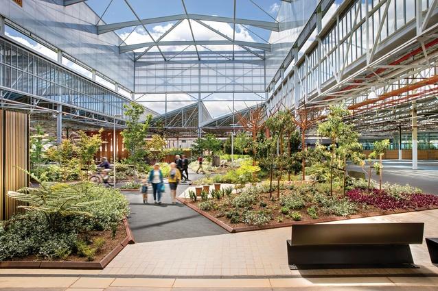 Winner delivered outcome large scale landscape australia for Oxigen landscape