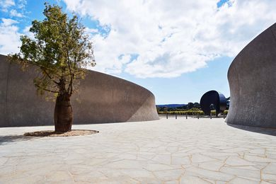 At the entry to Pt. Leo Estate, a dramatic sculptural courtyard featuring a Queensland bottle tree is an intense, dry space that contrasts the vineyards surrounding it.