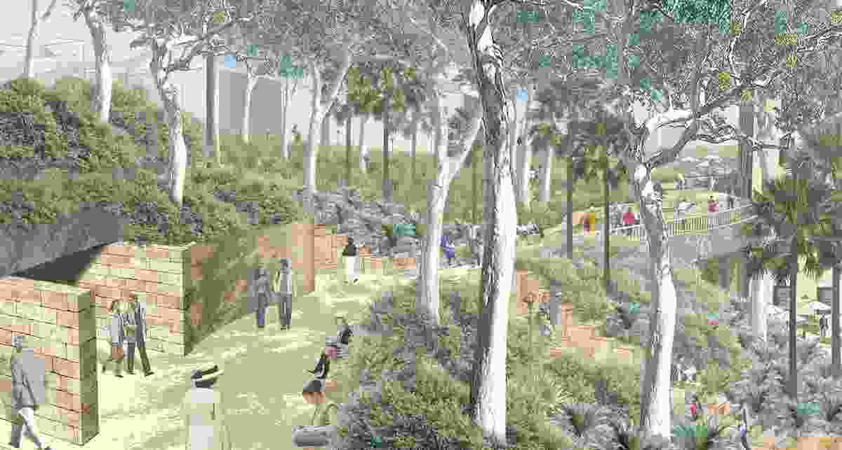 The proposed bushwalk trail through Headland Park.