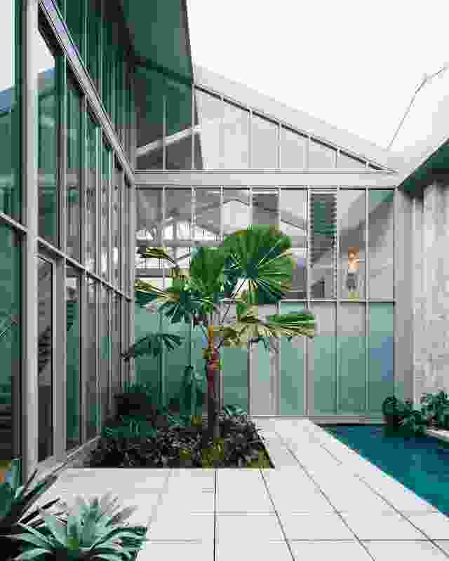 The architects raised the floor of the courtyard and pool by a half level, a subtle shift that draws the eye upwards as you enter the home.