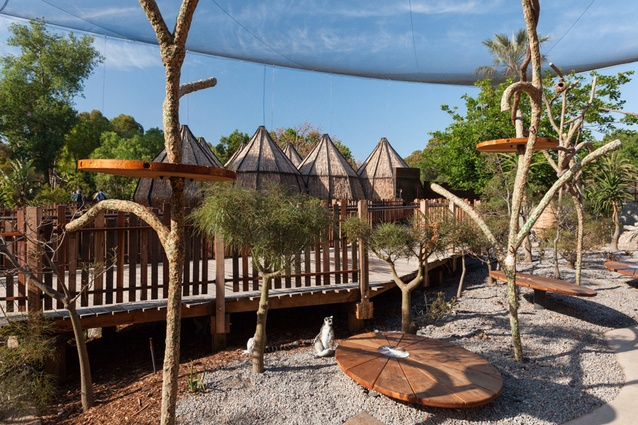 Elevated walkways and the Tree House structure allow visitors to interact with the lemurs at ground and tree levels.