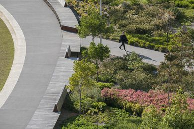 Monash University Eastern Precinct Landscape by TCL (Taylor Cullity Lethlean)
