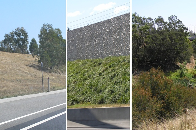 Variation in Freeway planting designs.
