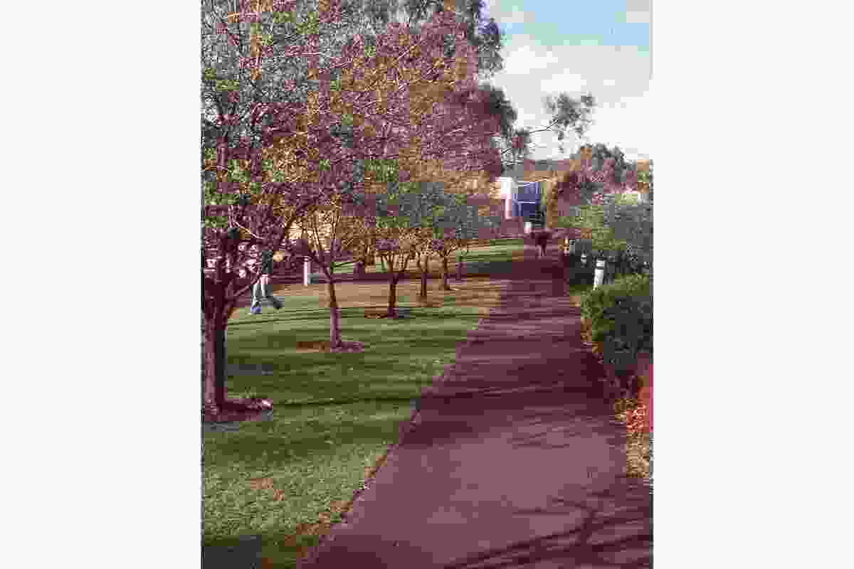 A 1993 view along the crab apple tree-lined pedestrian spine of Rosny Park towards the library entry.