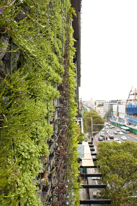 Vertical garden by Patrick Blanc at One Central Park, Sydney.