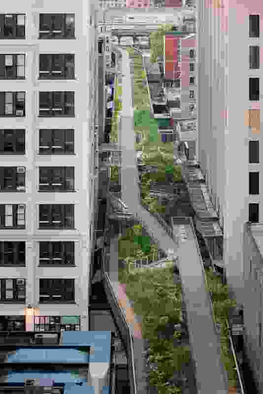 A pocket of greenery in a densely urbanized city.