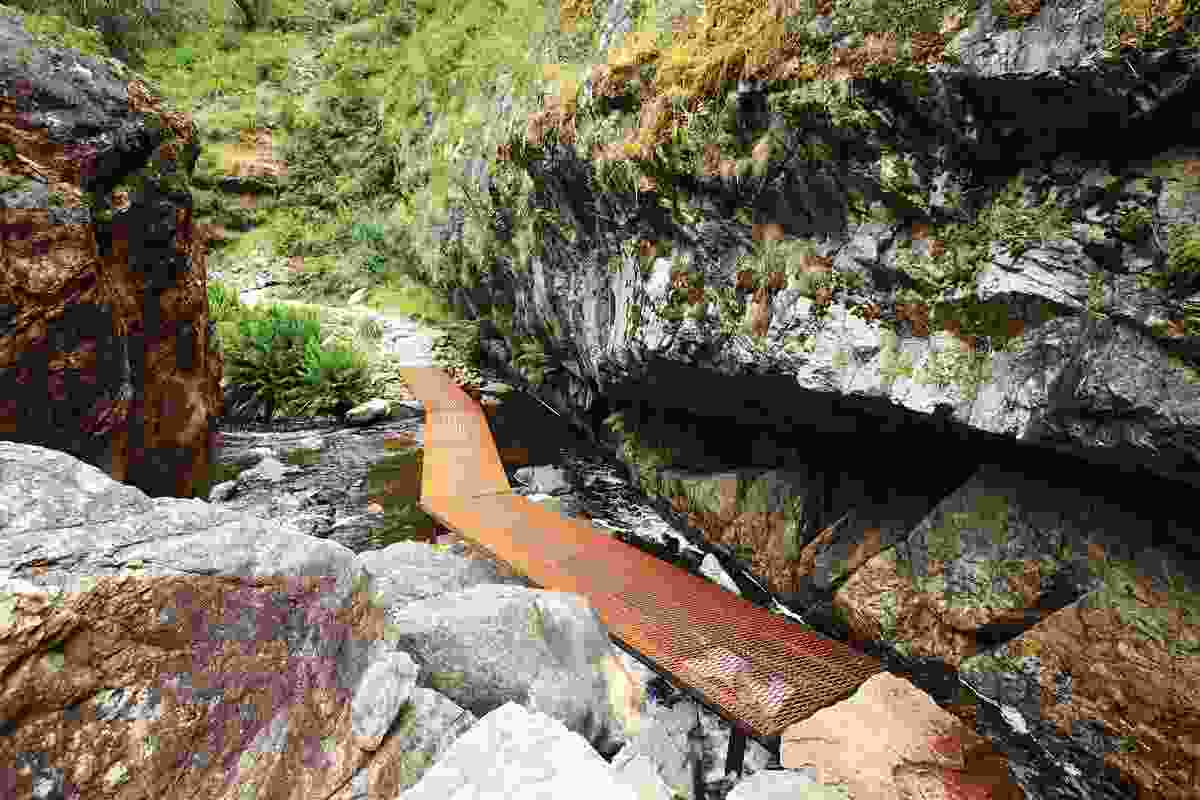 The first steel bridge along the trail zigzags through a cool microclimate at the base of an escarpment wall.