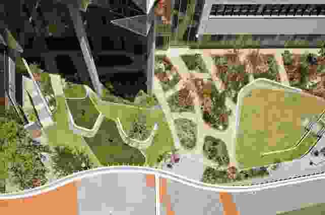 一个连续的景观特征贯穿菲奥娜斯坦利医院区域,连接庭院、广场、公园、屋顶和丛林。