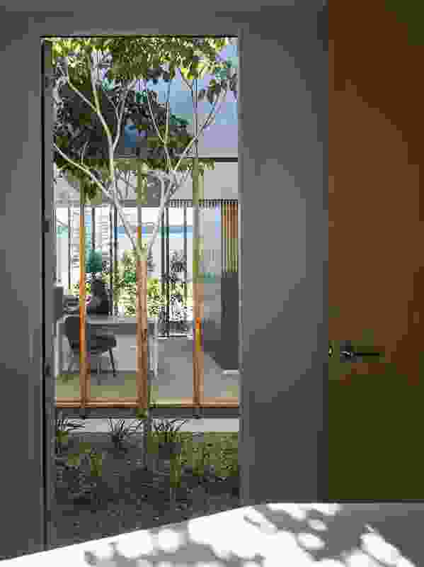 Each consulting room has been designed to look out to a garden courtyard, while maintaining patient privacy.